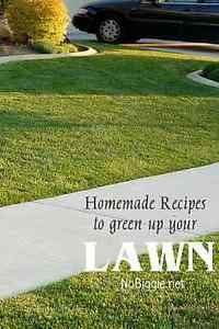 Professional lawn care and pest control can end up costing a lot of money. And sometimes is doesn't work the best. My neighbor shared these homemade yard recipes with us a few years ago, and they have...