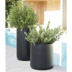 "Free Shipping.  Shop Saabira Fiberstone 23. 25"" Tall Planter.  Handsome planters play the supporting role with style, showcasing greenery indoors or out."