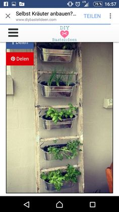 Kitchen:Metal Wall Planters Indoor Ikea Hanging Plant Holder Wall Herb Garden Ik… - All For Herbs And Plants Small Patio Spaces, Small Space Gardening, Garden Ideas For Small Spaces, Diy Garden Ideas On A Budget, Backyard Ideas, Large Backyard, Small Patio Design, Small Yards, Deck Ideas Uk