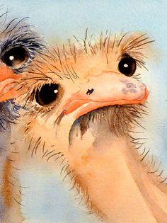 1. Bird Artwork / Watercolor Bird PRINT / Ostrich by LaBerge