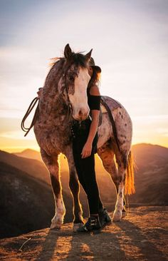 That is the most amazing color horse I have ever seen.
