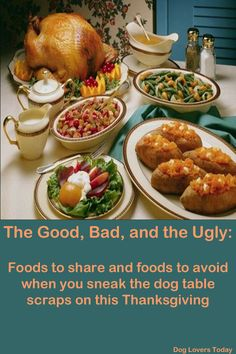 The Good and Bad, and the Ugly of Thanksgiving Day Leftovers for Your Pet |Dog Lovers Today