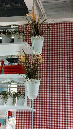 Hanging plants lower deck