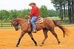 Smooth Spins -- Smooth out your reining horse's turnaround.