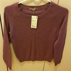 Uniqlo Women Purple Lambswool Blend Sweater New with tags! Uniqlo Women Purple Lambswool Blend Crew Neck Sweater - Size XS UNIQLO Sweaters Crew & Scoop Necks