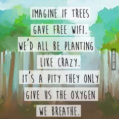 Imagine if trees gave WiFi...