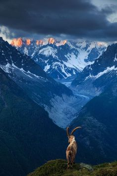 Chamonix valley in the French Alps.: