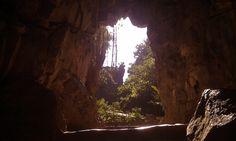 The Forest Cave Entrance by SphaT.deviantart.com on @DeviantArt