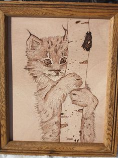 Pyrography cat | Bobcat Kitten Curiosity Pyrography