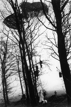 GERMANY. Wesel. March 24th, 1945. American paratroopers stuck in trees upon landing in Germany.