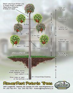 Petunia tree creation guide. Download it here: http://www.thegreenery.ca/gardening-tips/fun-projects/petunia-tree.html