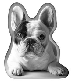 Manny Shaped Portrait Pillow (Limited Edition) - Manny the Frenchie