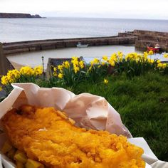 Went out for dinner tonight  #fishandchips #seaside #daffodils #Cullen #Scotland #Moray #visitscotland by alison_m_g_