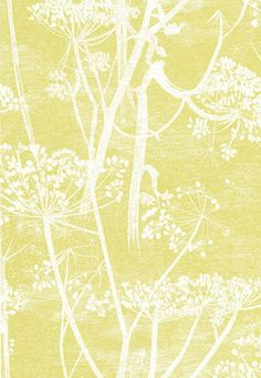 Cole & Son Wallpaper 66/7051.CS Cow Parsley White/Y