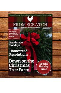 Free Digital Magazine