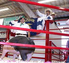 Livestock Sales