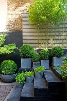 jardin paysagé, composition de pots de fleurs