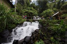 Jembong Waterfall: A Beautiful Waterfall in Northern Part of Bali