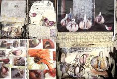 A2 FINE ART- Inside, outside, in-between Garlic and Onion development and analysis- Sketchbook Pages- Lauren nurse Springwood Highschool