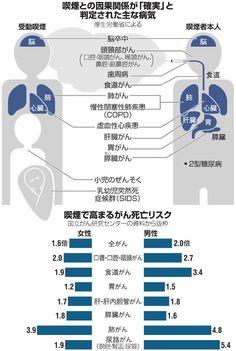 2020年の東京五輪・パラリンピックに向けて、受動喫煙防止対策を強化する必要がある――。厚生労働省は昨年、「たばこ白書」(喫煙の健康影響に関する検討会報告書)の最新版を発表しました。たばこと健康の問…