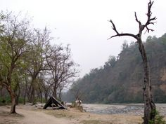 A jungle Safari at CORBETT NATIONAL PARL,UTTARAKHAND is a great way to discover your ''wild side'' !