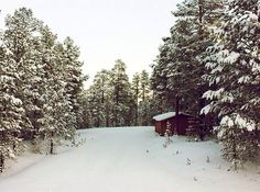 Let it snow, let it snow, let it snow. Photo courtesy of paulavacchiano on Instagram.