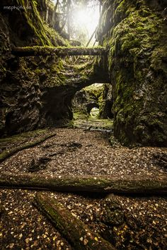Old mine in Persberg Landscape Photography, Nature Photography, Travel Photography, Picture Places, Paludarium, Old Trees, Solo Travel, Outdoor Travel, Natural Beauty