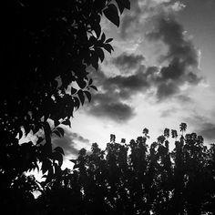 Ci vedo poco di buono  #blackandwhite #bnw #monochrome #instablackandwhite #monoart #insta_bw #bnw_society #bw_lover #bw_photooftheday #photooftheday #bw #instagood #bw_society #bw_crew #bwwednesday #insta_pick_bw #bwstyles_gf #irox_bw #igersbnw #bwstyleoftheday #monotone #monochromatic#noir #fineart_photobw