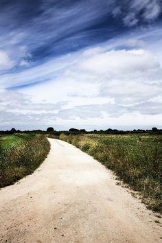Salreu´s trail © Mónica Pinto