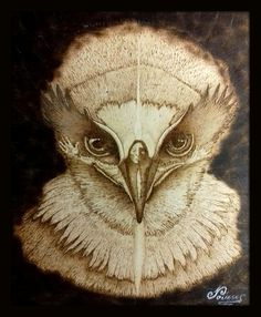 Spirit of the Bird #pyrography