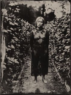 Photography, Large format in People, Portrait, Female, Large Format mentor panorama 18x24, wet plate collodion, ambrotype, Model: Monika Pietraszewska, http://www.maxmodels.pl/modelka-poison.html - Image #588962