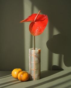 way simple anthurium