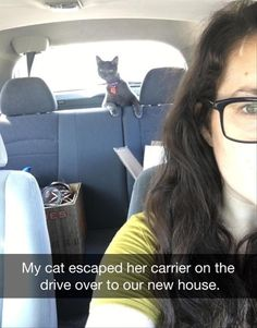 Caturday meme with snapchat of cat looking over the backseat after escaping the carrier