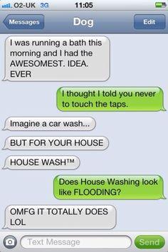 Dog text