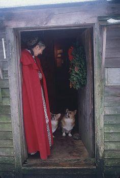 The late Tasha Tudor was a consummate Corgi lover, incorporating them into her . The late Tasha Tu Vie Simple, Victoria Magazine, Corgi Dog, Beatrix Potter, Belle Photo, Tudor, Vermont, History, Country