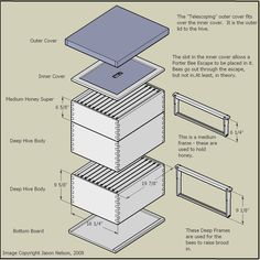 When thinking about the designs of bee hives, you will generally have three choices, and each of them will be explained briefly below. Bee Hives Boxes, Bee Boxes, Bee Hive Plans, Beekeeping For Beginners, Honey Bee Hives, Honey Bees, Beekeeping Equipment, Beekeeping Supplies, Bee Supplies