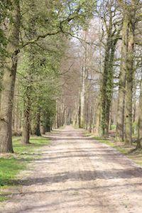 Wandelen met de Twentse Boerin in Markelo, Goor, Diepenheim - Hof van Twente