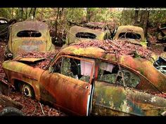 Best options rid old car