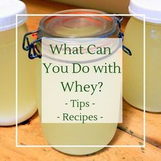 Want to know what you can with leftover whey from making cheese or Greek yogurt? Here are some ideas and recipes for whey soups, baking and more! Make Greek Yogurt, Homemade Greek Yogurt, Making Yogurt, Greek Yogurt Recipes, Yogurt Diy, Uses For Whey, Instapot Yogurt, Whey Recipes, Recipies