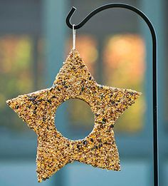 This simple nature project lets you give feathered friends a treat, even during cold months. From corrugated cardboard, cut a large star with a circle inside. Poke a hole and add a loop of twine for hanging. Spread peanut butter on both sides of the star. Working over a rimmed baking sheet, coat the star with birdseed.