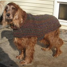 Ravelry: deafsetter's easy large dog sweater