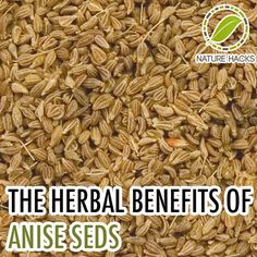 Herbal Benefits of Anise Seed-If I recall correctly Anise is somehow related to licorice