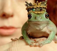 You might have to kiss a lot of frogs to find your Prince Charming.