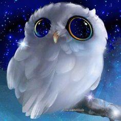 DIY Diamond Painting Full circular Diamond Owl in the night sky Embroidery Cross Stitch Rhinestone Mosaic Painting Home Decor Cute Animal Drawings, Cute Drawings, Baby Owls, Cute Baby Animals, Cute Owl, Cute Cats, Owl Art, Animal Wallpaper, Cute Cartoon
