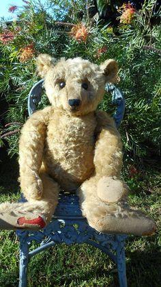 "FABULOUS ANTIQUE STEIFF BEAR  28"" TALL c1906-FINAL PRICE #Steiff"
