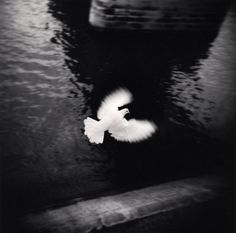 Black and White Photography by Michael Kenna_15