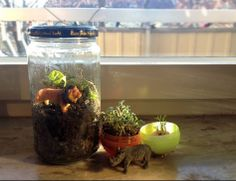 mini green house from recycled jars and boxes. Recycling. Kid crafts. DIY. Instructions in Swedish. Google Translate is your friend!