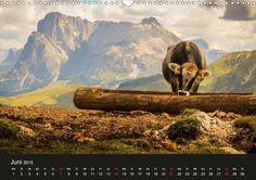 "Bergpixel ""Höhenrausch und Leidenschaft"" - CALVENDO-Kalender von Maik Major - www.calvendo.de/galerie/bergpixel-hoehenrausch-und-leidenschaft/ - Berge, Berg, Kalender, Calvendo, Zugspitze, Allgäu, Wandern"