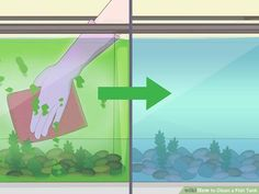How to Clean a Fish Tank. Ensure your fish are happy and healthy by keeping their tank clean and properly filled with water. You may need to top off the tank with prepared water frequently. Cleaning an aquarium isn't difficult, especially. Reef Aquarium, Saltwater Aquarium, Freshwater Aquarium, Self Cleaning Fish Tank, Diy Aquarium Filter, Antique Bird Cages, How To Clean Headlights, Reverse Osmosis Water, Tanked Aquariums