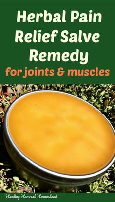 How to Make a Pain Relief & Sore Muscle Herbal Salve (Joints, Muscles, Tension, Stiffness) — Home Healing Harvest Homestead Cold Home Remedies, Natural Health Remedies, Herbal Remedies, Eczema Remedies, Ginger Benefits, Natural Pain Relief, Hacks, Sore Muscles, Natural Medicine